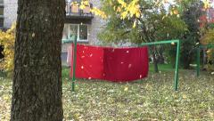 Autumn leaves falling from tree in urban garden Stock Footage