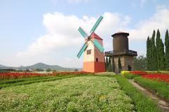 Dutch windmill and water tank on little flower garden. Stock Photos