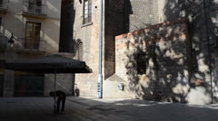Santa Maria del Mar, temple, Barcelona. Stock Footage