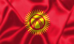 Kyrgyzstan flag blowing in the wind Stock Illustration