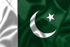Pakistan flag blowing in the wind Stock Illustration