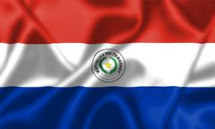 Paraguay flag blowing in the wind Stock Illustration