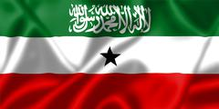 Somaliland flag blowing in the wind Stock Illustration