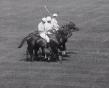 1917 - Polo Game Scenes - 01 - stock footage