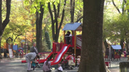 Stock Video Footage of Children's playground, happy kids on the slide, fall season, autumn colors