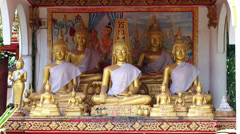 Buddha Statues at Temple in Vientiane, Laos Stock Footage