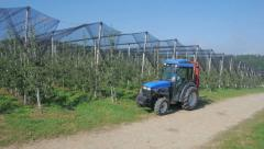Aerial view: Tractor in the Orchard with netting - stock footage