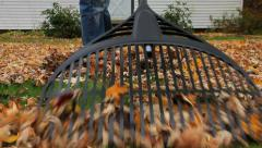 Man raking leaves in his front yard, low camera angle, MS Stock Footage