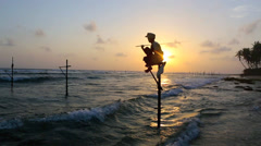 Sri Lanka stilt fisherman at sunset Stock Footage