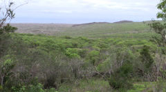 P03094 Galapagos Island Scenery and Habitat Stock Footage