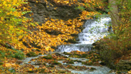 Stock Video Footage of Colorful leafs next to a waterfall during autumn