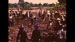 Vietnam War - Farmers Working On Field - 02 Stock Footage