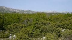 AERIAL: flying over rocky landscape with juniper bushes Stock Footage