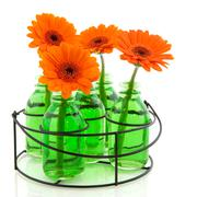 Colorful flowers in glass vases Stock Photos
