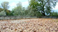 Indian summer - stock footage
