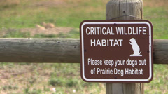 P02966 Open Space City Park and Urban Wildlife Stock Footage