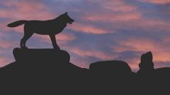Wolf ulvonta siluetti vastaan vaaleanpunainen pilvet Arkistovideo