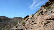 Stock Video Footage of Woman Trail Running with Dog in the Desert 4