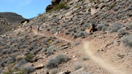 Stock Video Footage of Man Trail Running with Dog in the Desert