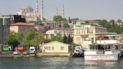 Goldenhorn Stock Footage