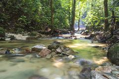 mountain stream in deep tropical forest - stock photo