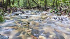 Water stream Stock Photos