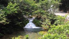 Roadside waterfall Stock Footage