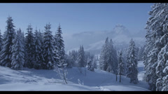 Snowy Landscape - RED Epic Stock Footage