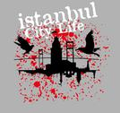 Istanbul big city vector art Stock Illustration