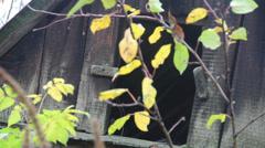 abandoned old barn door - stock footage