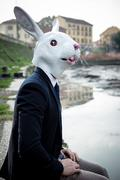 Rabbit mask man in a desolate landscape Stock Photos