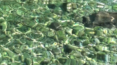 Ripples on malachite waters - stock footage