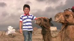 Boy with a camel Stock Footage