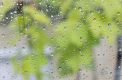 Kaunis tausta sadepisarat virtaa alas ikkuna näön vihreä l Kuvituskuvat
