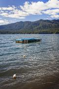 swimming platform - stock photo