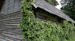 Whole side old cedar wooden shake shingle roof of the hop humulus Stock Footage