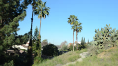 Riverside Hills Stock Footage