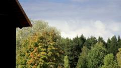 House surrounded by luscious aspen trees Stock Footage