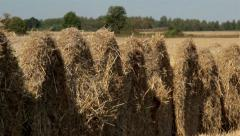 Piled up haystack in the field Stock Footage