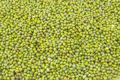Heap of mung beans Stock Photos