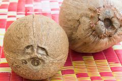 eye coconut fruits - stock photo