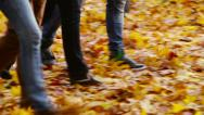 Stock Video Footage of Ankle-deep In Leaves