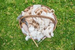 alpaca wool peruvian andes  cuzco peru - stock photo