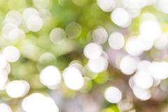 Photo of blurred lights white sparkles. Stock Photos