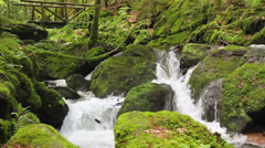Stock Video Footage of Famous Gertelbach Waterfalls