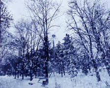 christmas winter backgrounds landscape concept and idea shot - stock footage