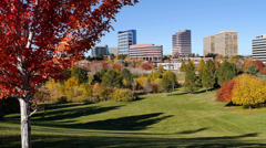 Denver Tech Center in Autumn Stock Footage