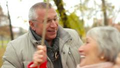 Swinging Seniors Stock Footage