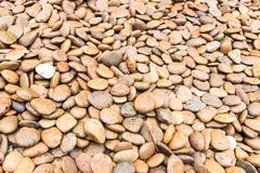River stone background Stock Photos