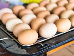 eggs grill - stock photo